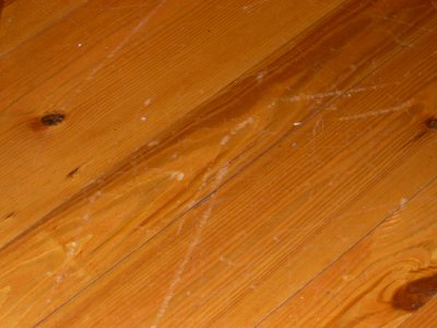Hardwood Floor Finish Chipping Wood Flooring Guy Com